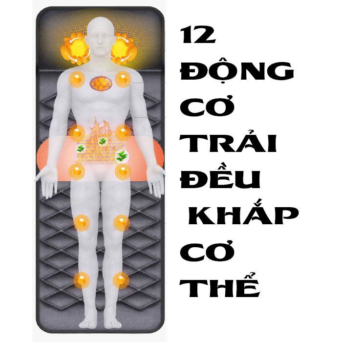 Nệm massage YJ-306G